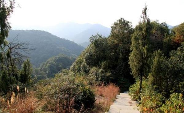 马儿山茶会游记:在山上喝茶的日子